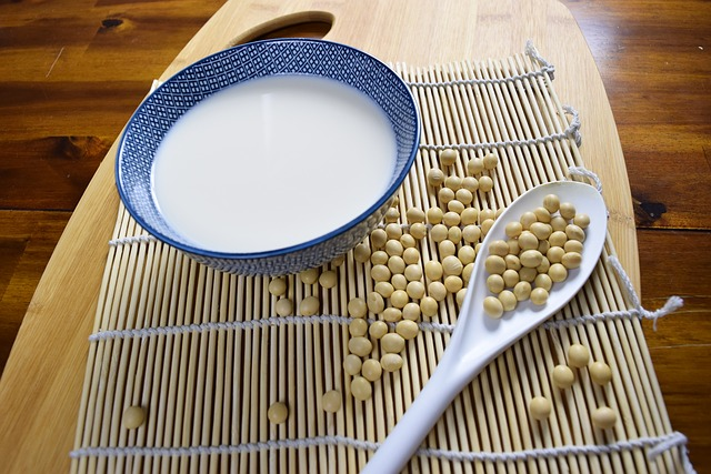 soymilk-diet9