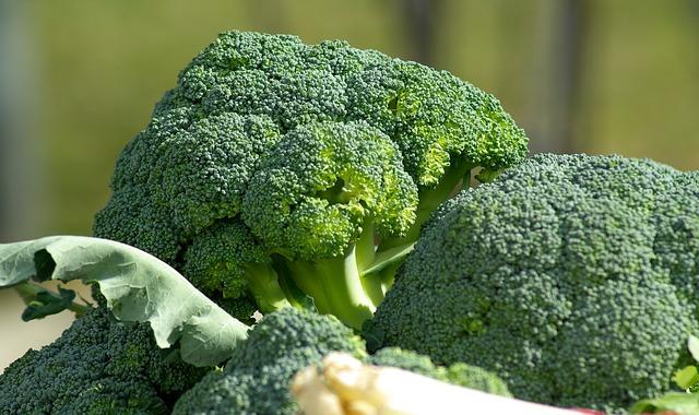 broccoli-diet8
