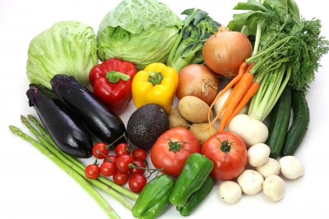 protein-diet3