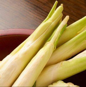 makomodake-diet3