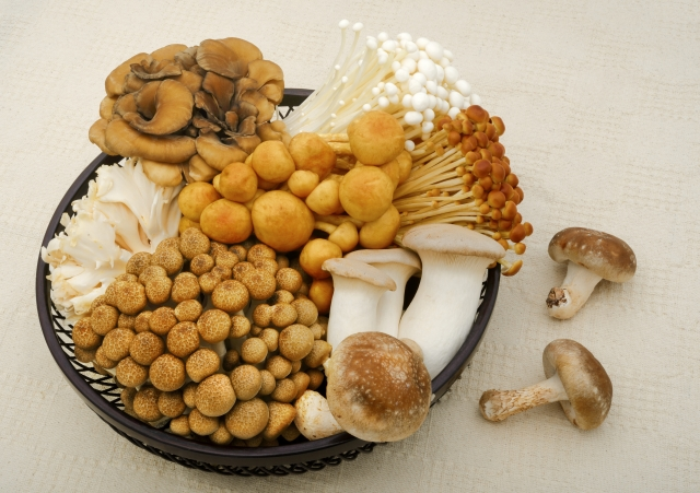 mushroom-diet5