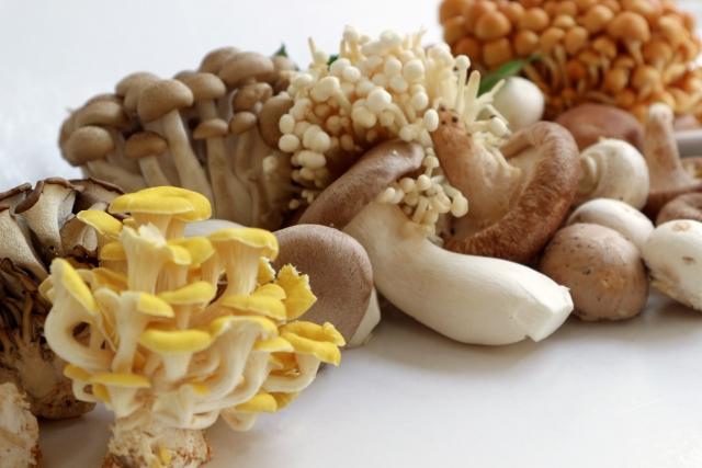 mushroom-diet6